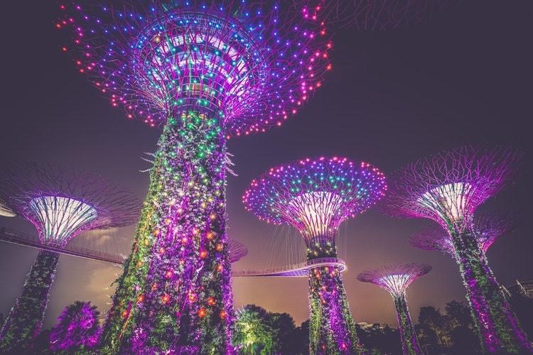 singapore gardens port guide