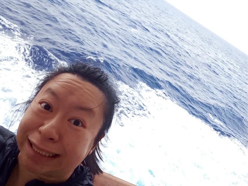 star princess hawaii christmas cruise review