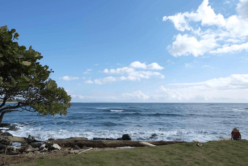 hawaii shore excursions princess cruise