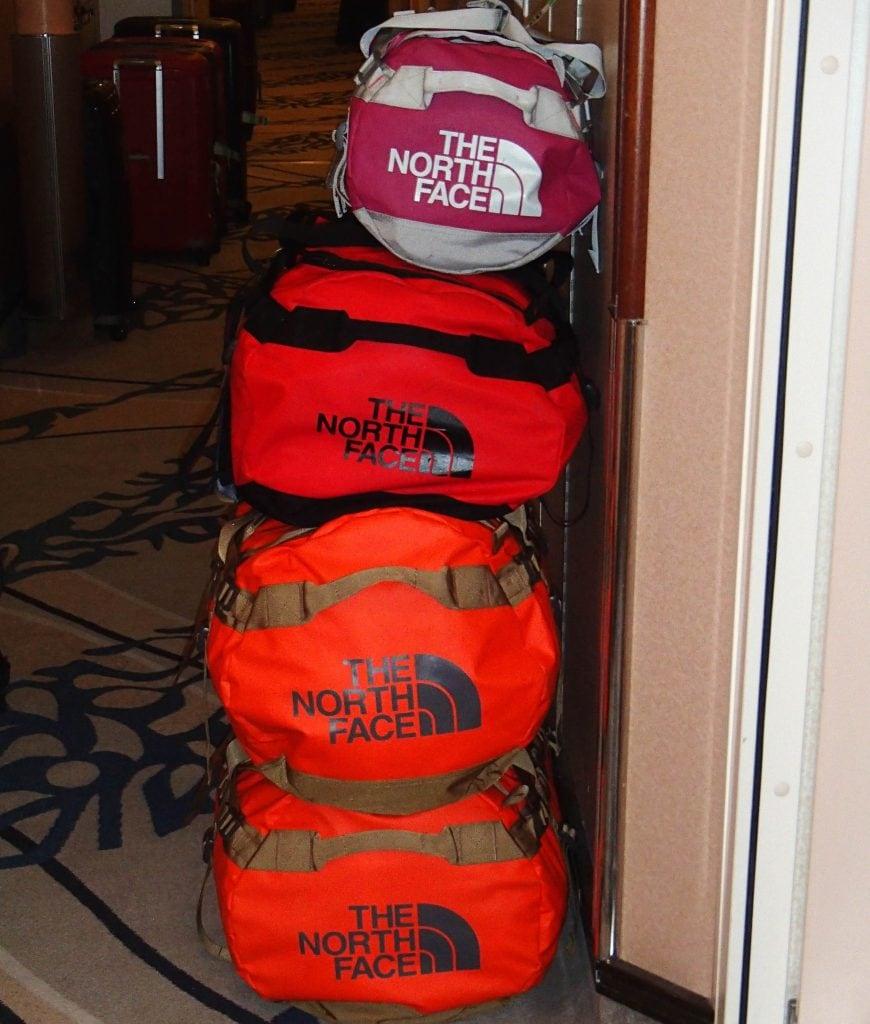 luggage cruise