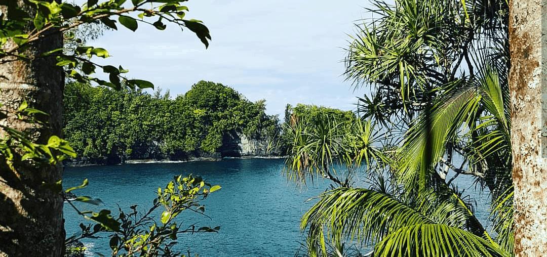 hawaii cruise ocean trees nature