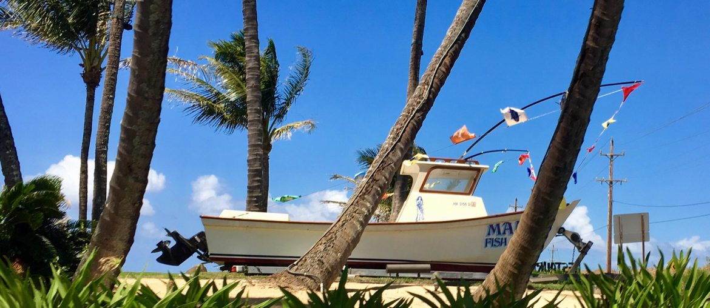 hawaii cruise beach
