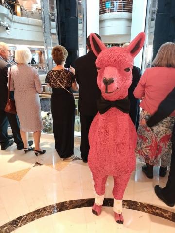 Marella Discovery Llama Alpaca in Atrium Formal Wear Bow Tie Dress to Impress