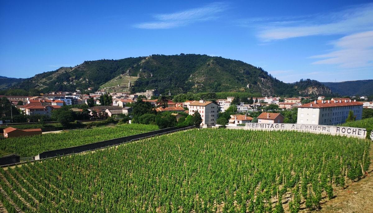 Emerald Waterways Tournon Vineyard Excursion