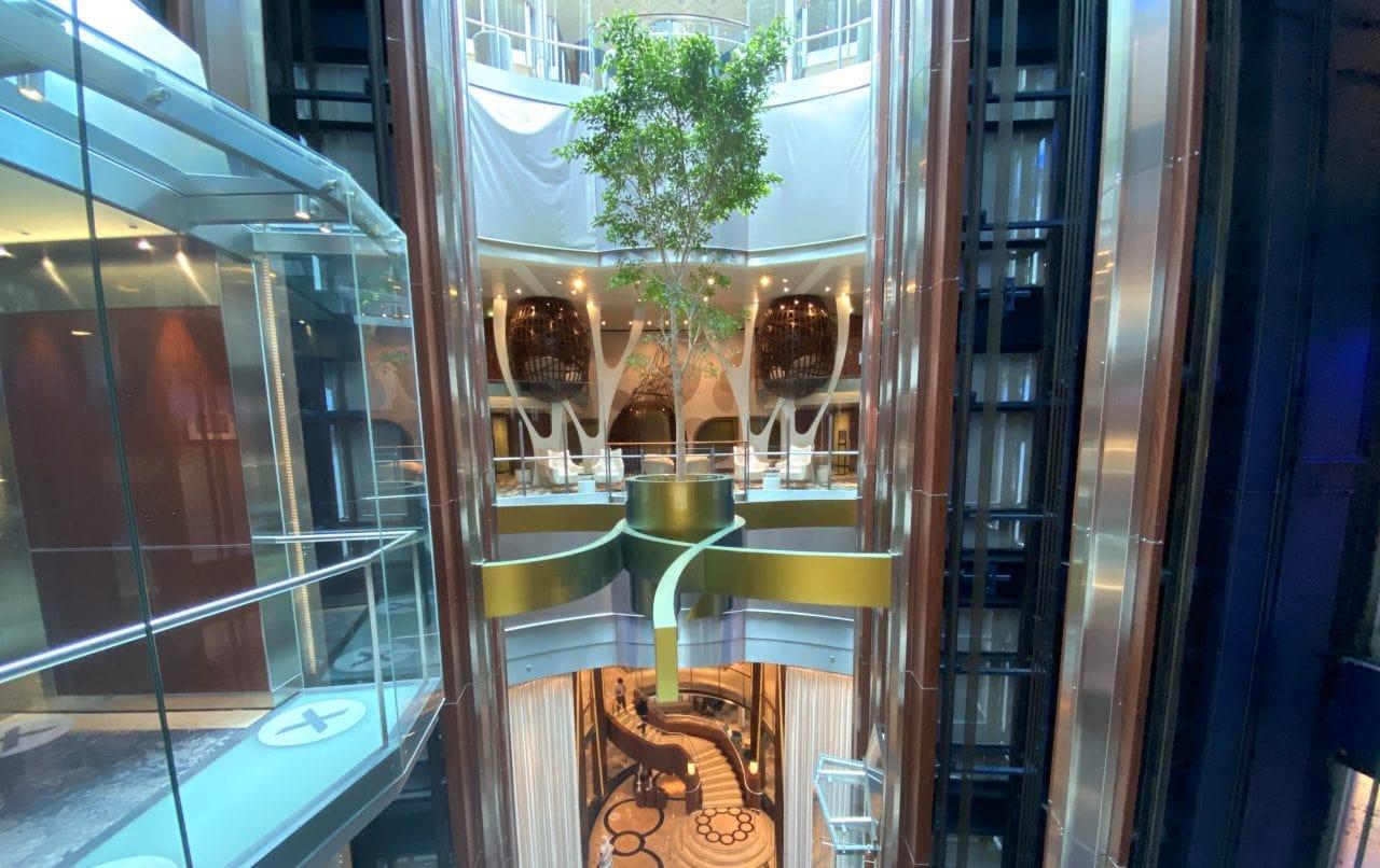 Celebrity Silhouette Tree in Atrium